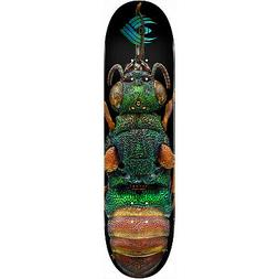 Powell Peralta Skateboard Deck Biss Flight Ruby Tailed Wasp